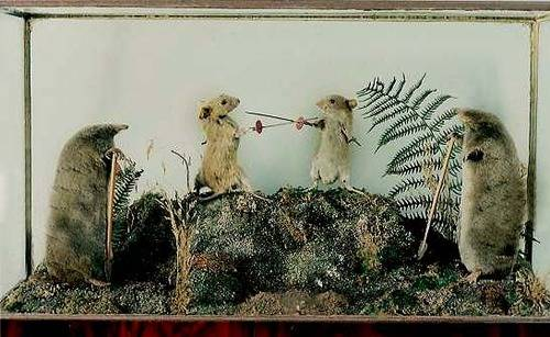 ビクトリア朝時代のイギリスの剥製アートがちょっと不気味でとても可愛い