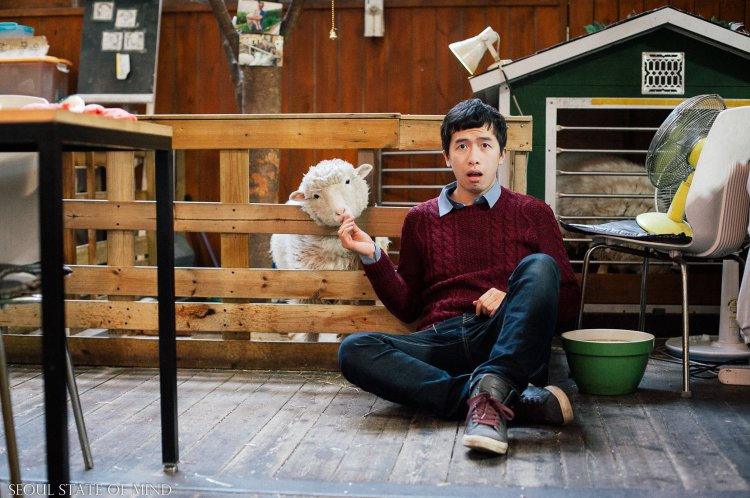 世界初!ヒツジカフェが韓国にオープン!店内でヒツジをモフモフできるぞ!!