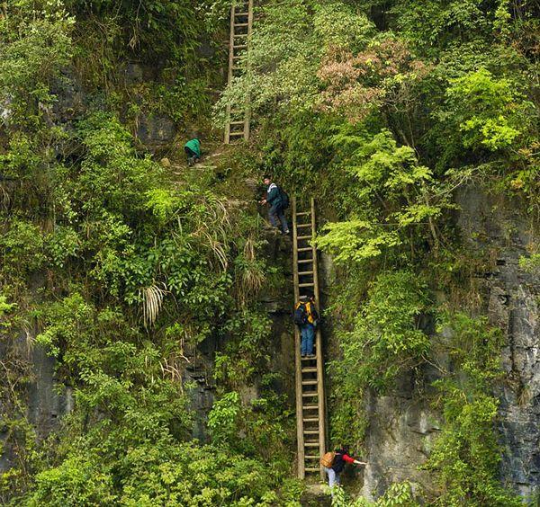 木製のはしごを渡る小学生達。中国南部