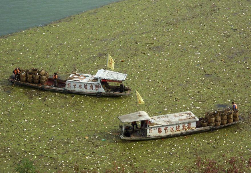 長江の浮いたゴミを掃除する船