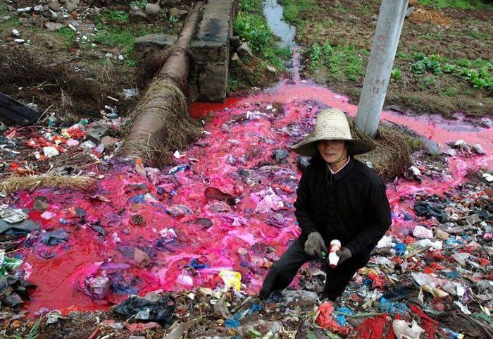 染料で汚染されてしまった川とペットボトルを回収する女性