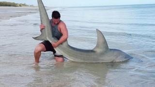 浜サメ釣りを極めて200匹以上のサメを釣りあげた19歳青年